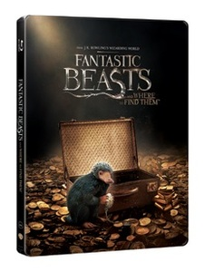 BLU-RAY / FANTASTIC BEASTS AND WHERE TO FIND THEM STEELBOOK LE (2D+3D)